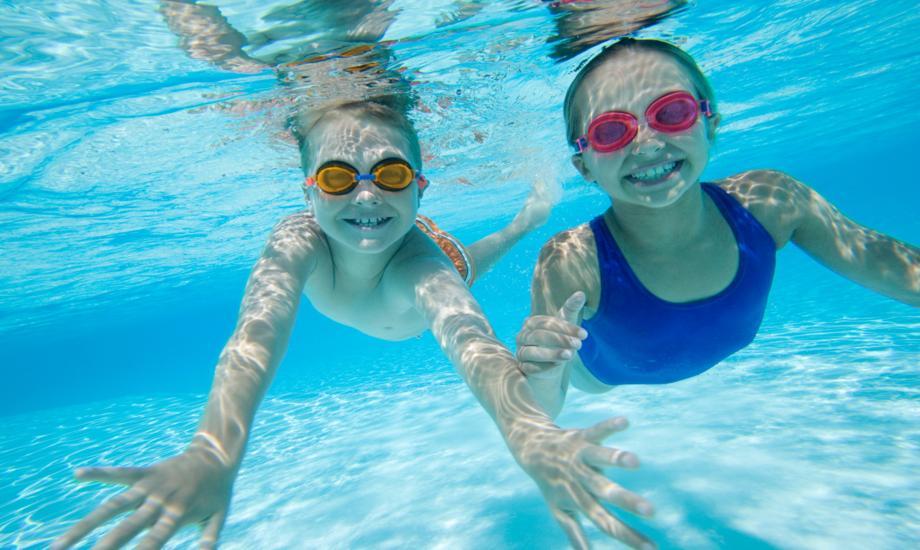 Swimming Pool Lionheart 39 S Lair